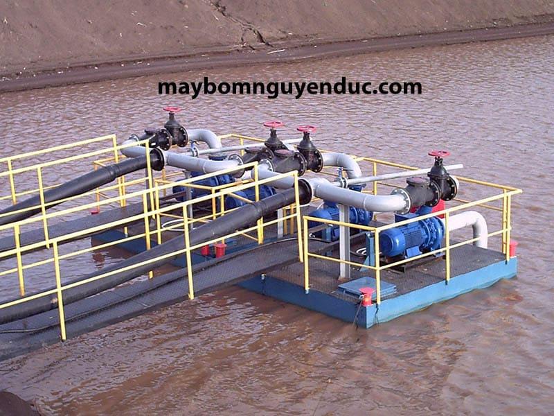 Máy bơm ly tâm Ebara trong ngư nghiệp